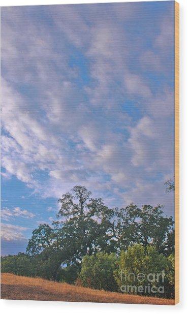 North Knoll Wood Print by Gail Salitui