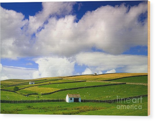 North Pennines Barns In Landscape Wood Print