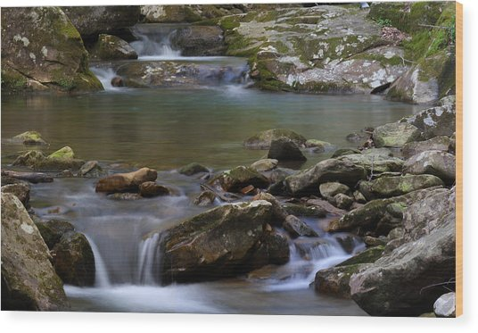 Wood Print featuring the photograph North Prong Of Flat Fork Creek by Daniel Reed