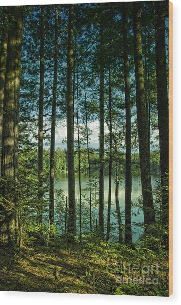 North Woods Lake Wood Print