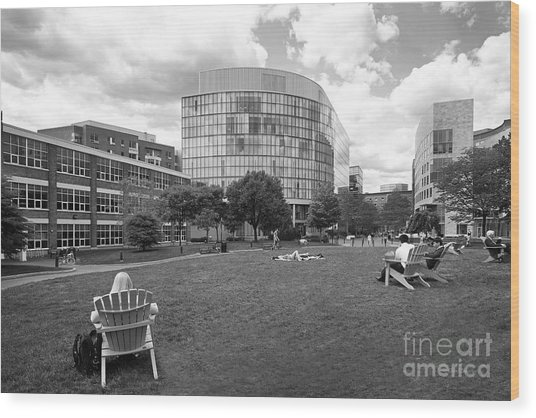 Northeastern University Behrakis Health Sciences Center Wood Print by University Icons