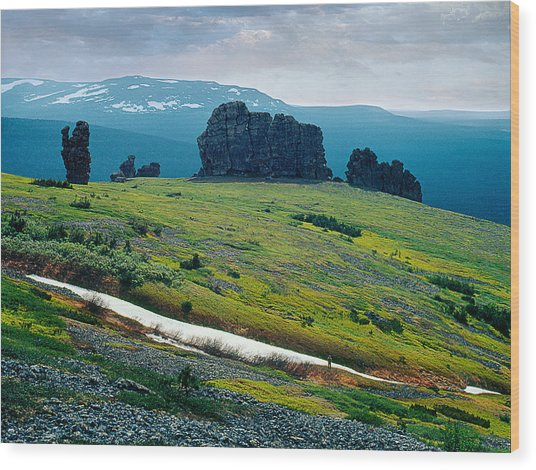 Northen Summer Landscape Wood Print by Vladimir Kholostykh