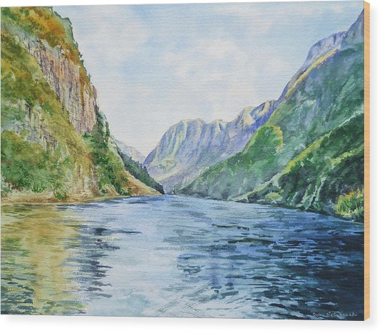 Norway Fjord Wood Print