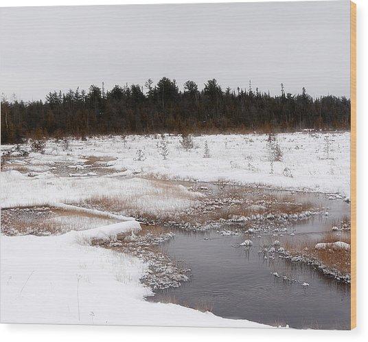 Norwegian Creek Wood Print