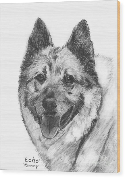Norwegian Elkhound Sketch Wood Print
