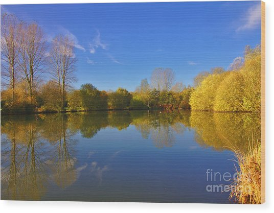 Wood Print featuring the photograph November Lake 1 by Jeremy Hayden