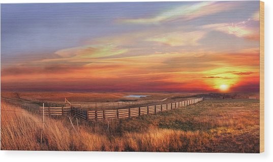 November Sunset On The Cattle Pens Wood Print