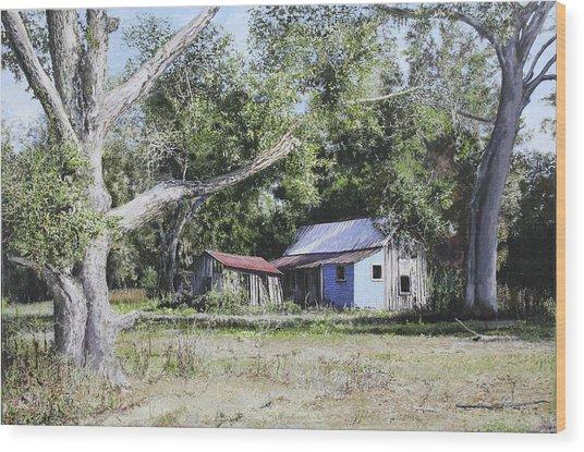 Nude Landscape Chiefland Florida Wood Print