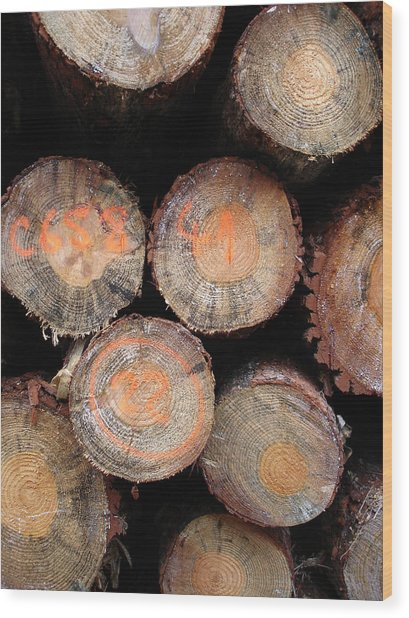 Number Logs Wood Print by Michel Mata