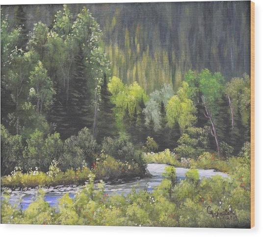 Nw Branch Old Man River Wood Print