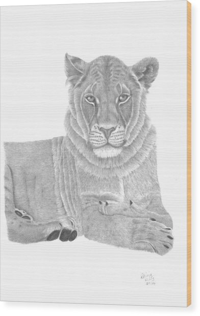 Nyah The Lioness Wood Print