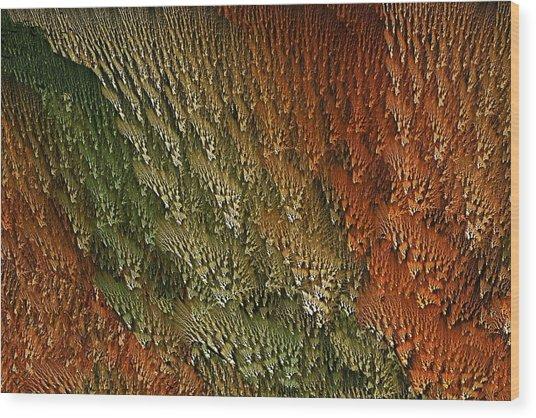 Nydntwar Frostlands Wood Print