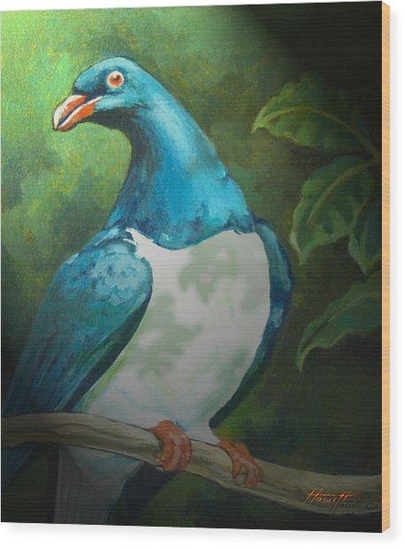 Nz Native Pigeon Kereru Wood Print by Patricia Howitt