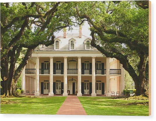 Oak Alley Mansion Wood Print