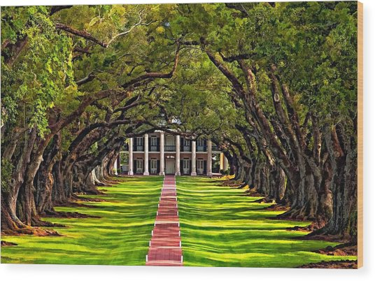 Oak Alley Wood Print