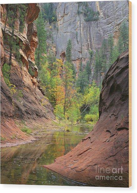 Oak Creek Canyon Wood Print