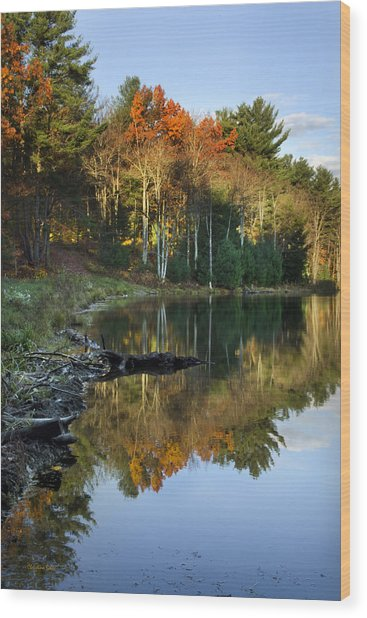 Wood Print featuring the photograph Oakley Corners State Forest by Christina Rollo