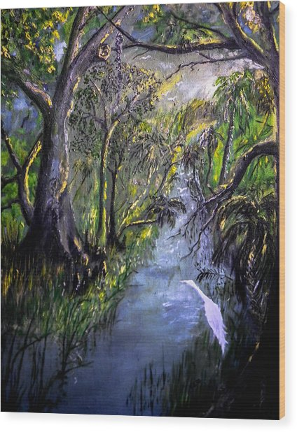 Ocala Creek Wood Print