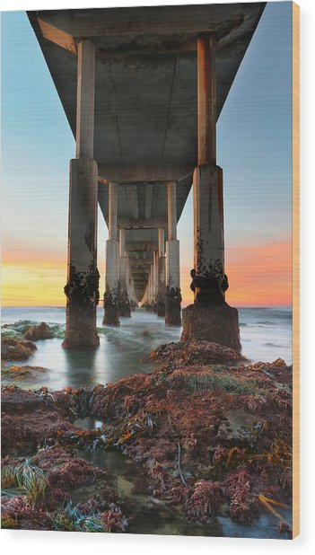 Ocean Beach California Pier 2 Wood Print by Larry Marshall
