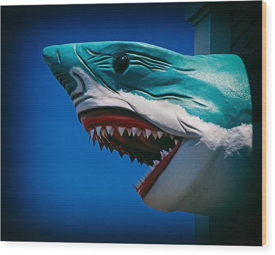 Ocean City Shark Attack Wood Print