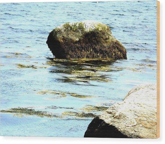 Ocean Rock Wood Print by Dancingfire Brenda Morrell