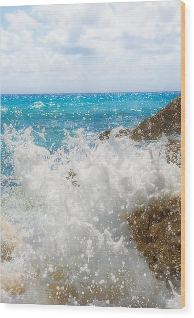 Ocean Spray Wood Print