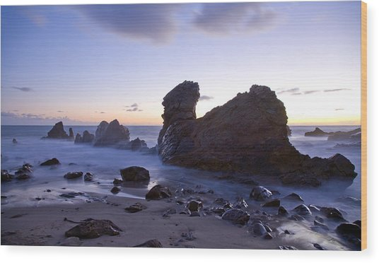 Ocean T Rex Wood Print