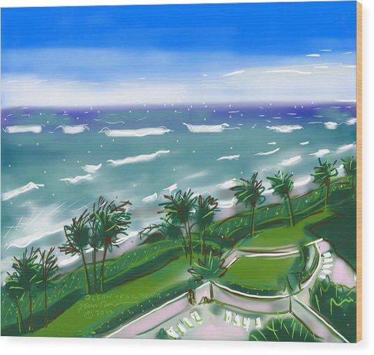 Ocean Trail Beach Wood Print