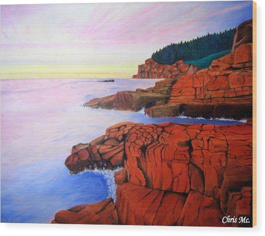Ocean View Wood Print by Chris Mc