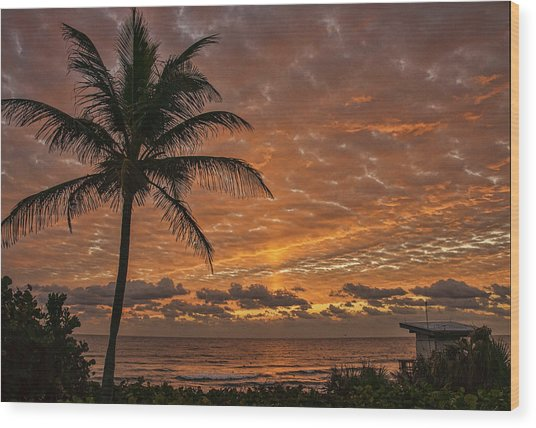 Oceanfront Park Sunrise 2 Wood Print