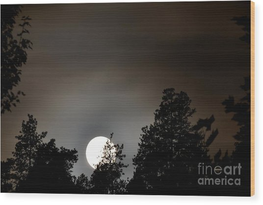 October Full Moon I Wood Print by Phil Dionne