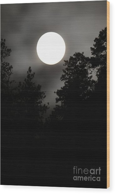 October Full Moon IIi Wood Print by Phil Dionne