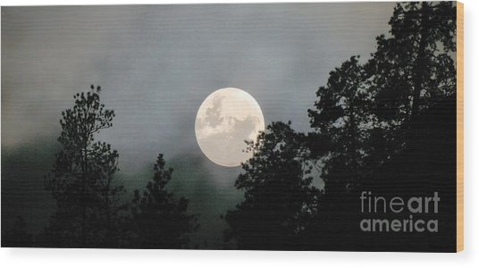 October Full Moon Iv Wood Print by Phil Dionne