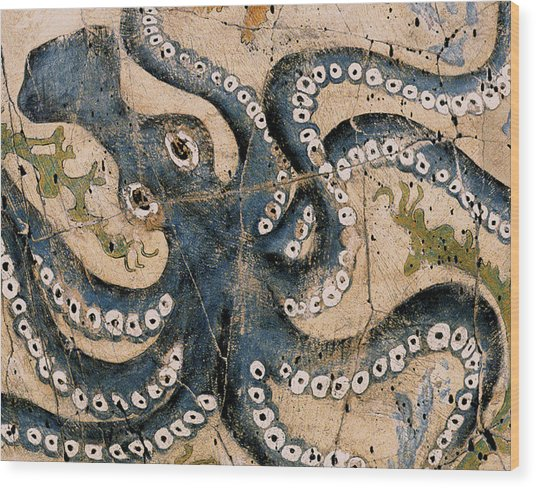 Octopus - Study No. 1 Wood Print