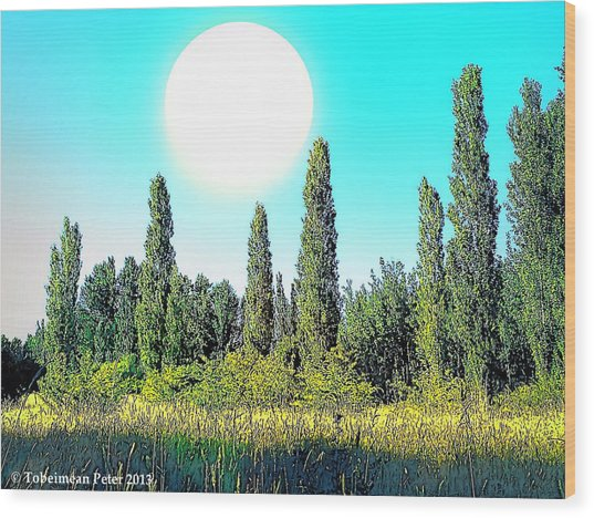 Odd Landscape Wood Print