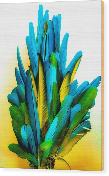 Yellow And Turquoise Wood Print by Paulette Maffucci