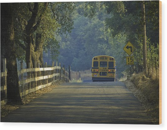 Wood Print featuring the photograph Off To School by Sherri Meyer