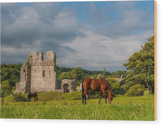 Ogmore Castle Wood Print by David Ross