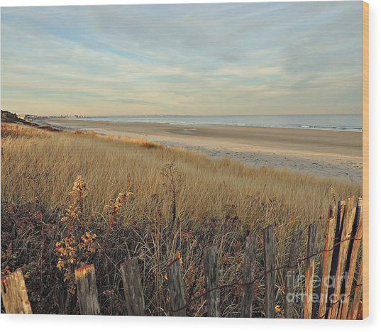 Ogunquit Beach 3 Wood Print