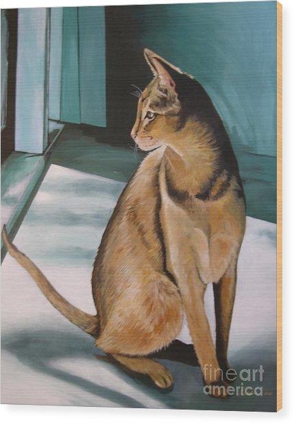 Oh Beautiful House Cat Wood Print