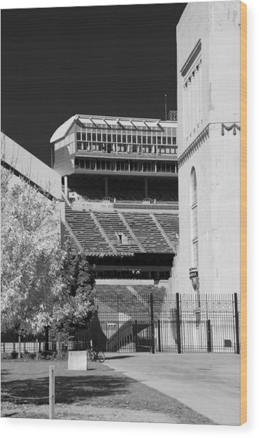 Ohio Stadium 9207 Wood Print
