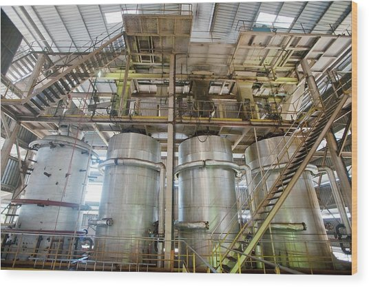 Oil Palm Processing Factory Wood Print by Scubazoo/science Photo Library