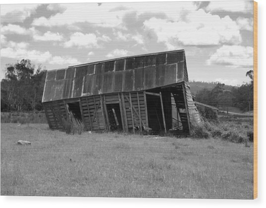 Old And Tired Wood Print by Philip Hartnett