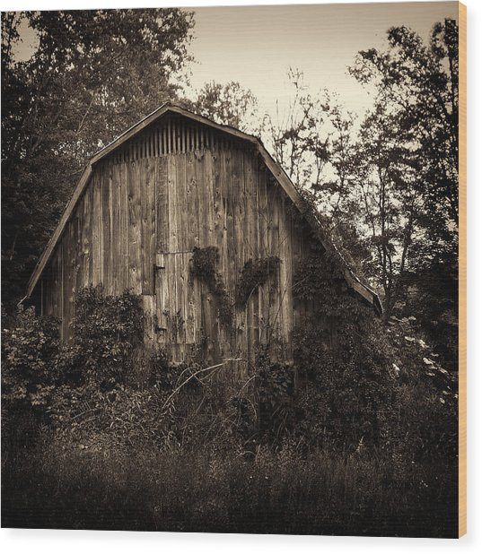 Old Barn 04 Wood Print