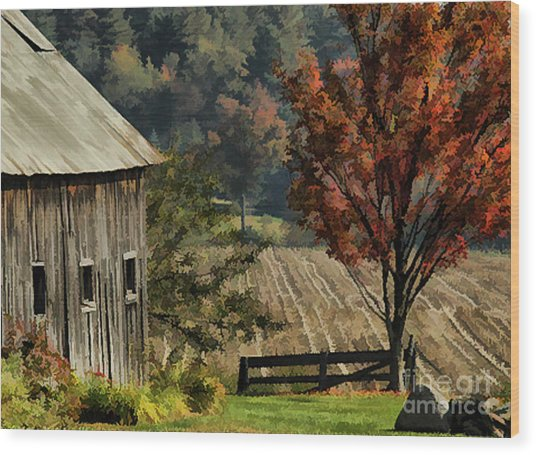 Old Barn And Field Wood Print