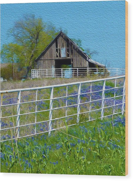 Old Barn - Another Spring Wood Print