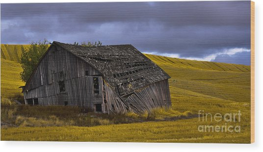 Old Barn Wood Print by Camille Lyver