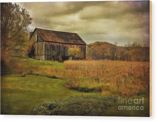 Wood Print featuring the photograph Old Barn In October by Lois Bryan