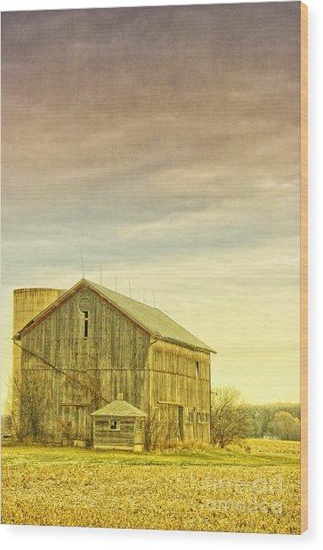 Old Barn With Silo Wood Print