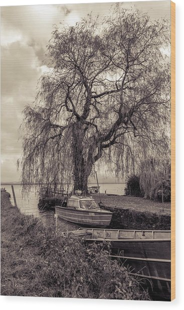 Old Boat Wood Print by Marie Sullivan
